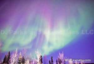 Alaska Aurora 1 (40)
