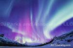 Alaska Aurora 1 (57)