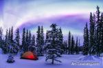 Alaska Aurora 1 (82)