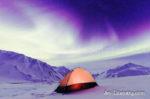Alaska Aurora 1 (87)