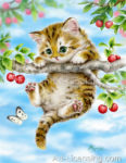 Cherry Tree Kitten