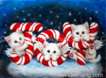 Joy Angels Kittens