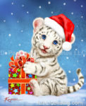 White Tiger Cub's Christmas Gift
