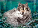 Wolf-Inspired by the Story of Lobo The King of Currumpaw-Lobo and Blanca-Winter Duet