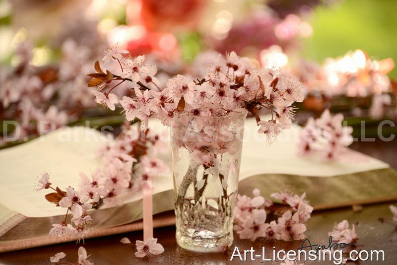Ayako-4161-Cherry Blossom