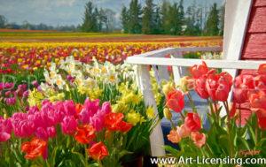 00001Art-Tulip Daffodil Field-by AYAKO