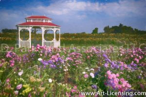 00012Art-White Gazebo on Aster and Sunflower Field-by AYAKO