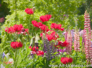 00115Art-Red Anemones and Snapdragons Flower-by AYAKO