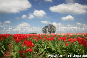 0156Art-Red Tulip Field in Spring-by AYAKO