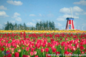 070Art-Windmill on the Tulip Field in Oregon USA-by AYAKO