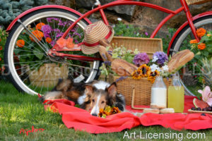 1719-Red Bicycle Picnic with-Bebe Sheltie dog-by AYAKO