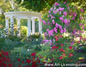 4507Art-White Gazebo in the Rose Garden by AYAKO