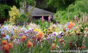 7323Art-Iris Garden-by AYAKO
