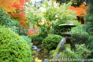 7566Art-Fall Colors Maple Trees in Portland Japanese Garden