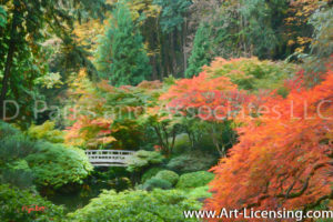7642Art-Fall Colors Maple Trees in Portland Japanese Garden-by AYAKO
