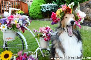 8728-Spring Flower Crown on Bill dog-by AYAKO