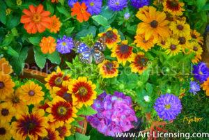 8324SArt-Rudbeckia Summer Garden Flowers and Butterfly