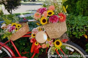2405S-Dahlias and Sunflowers on Red Bicycle