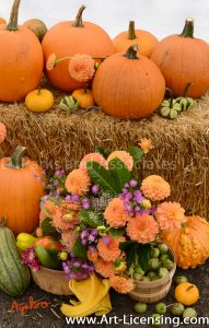 2546S-Dahlias Bouquet and Pumpkins
