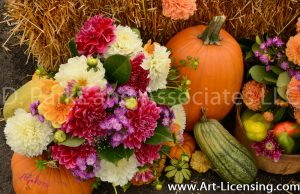 2558S-Dahlias Bouquet and Pumpkins