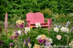 7000-Iris and Pink Chair in the Garden