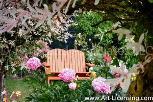7308-Peonies and Orange Bench in the Garden